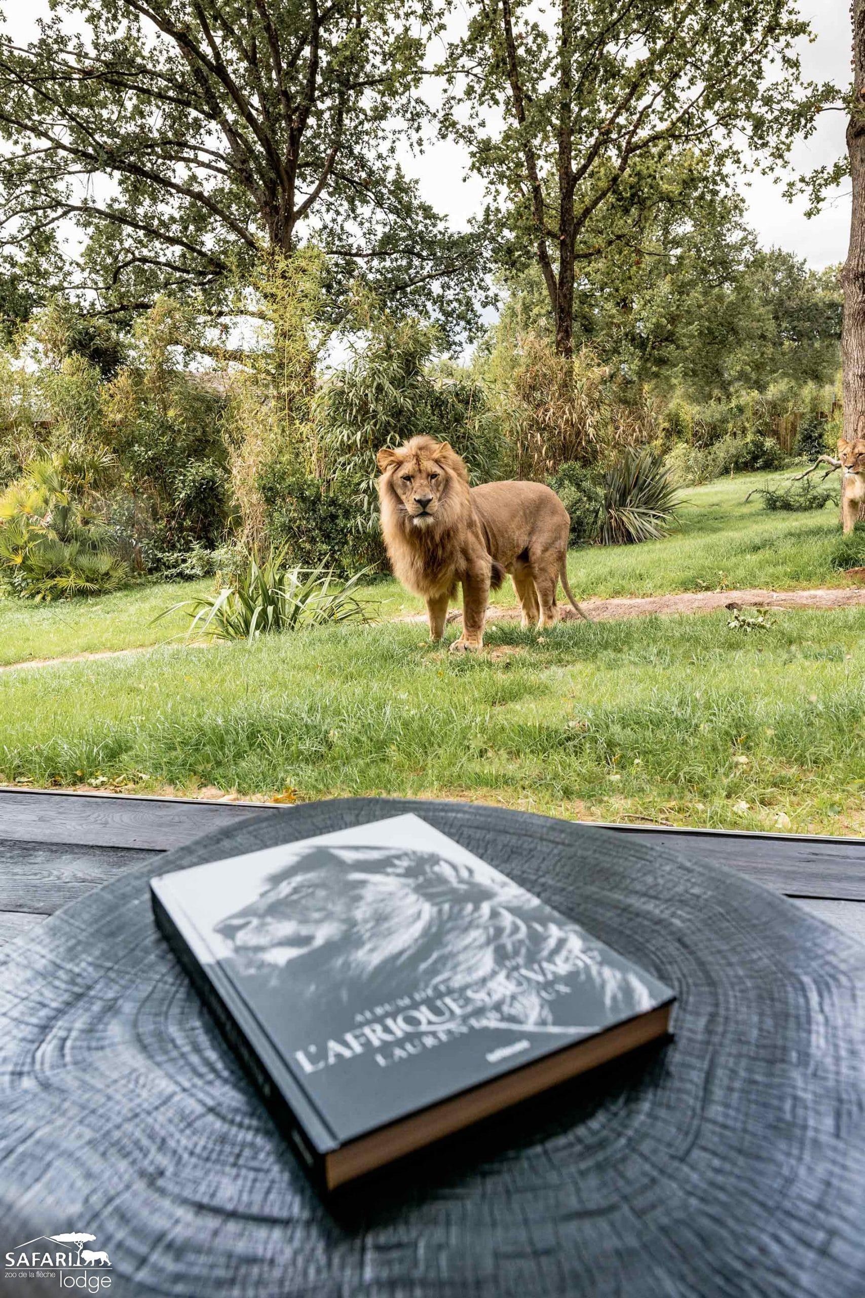 Logement insolite Lodge Zoo la Flèche - Les Cro'coeurs Blog voyage